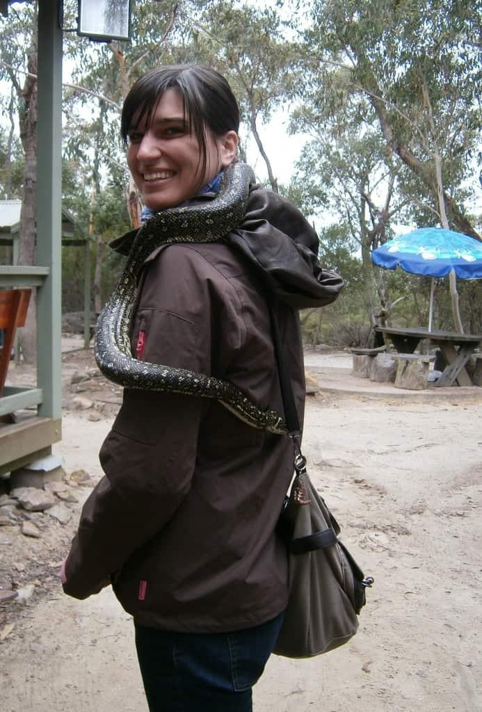 Snake encounter, Australia