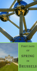 First days of spring in Brussels Pin