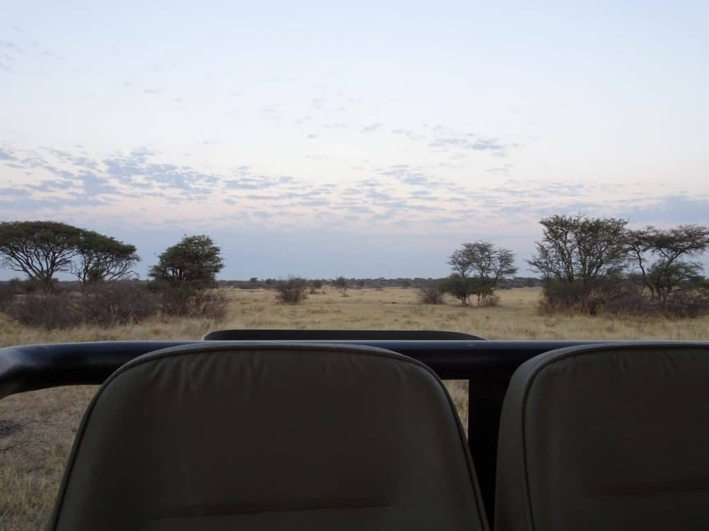 Sunrise during Game Drive