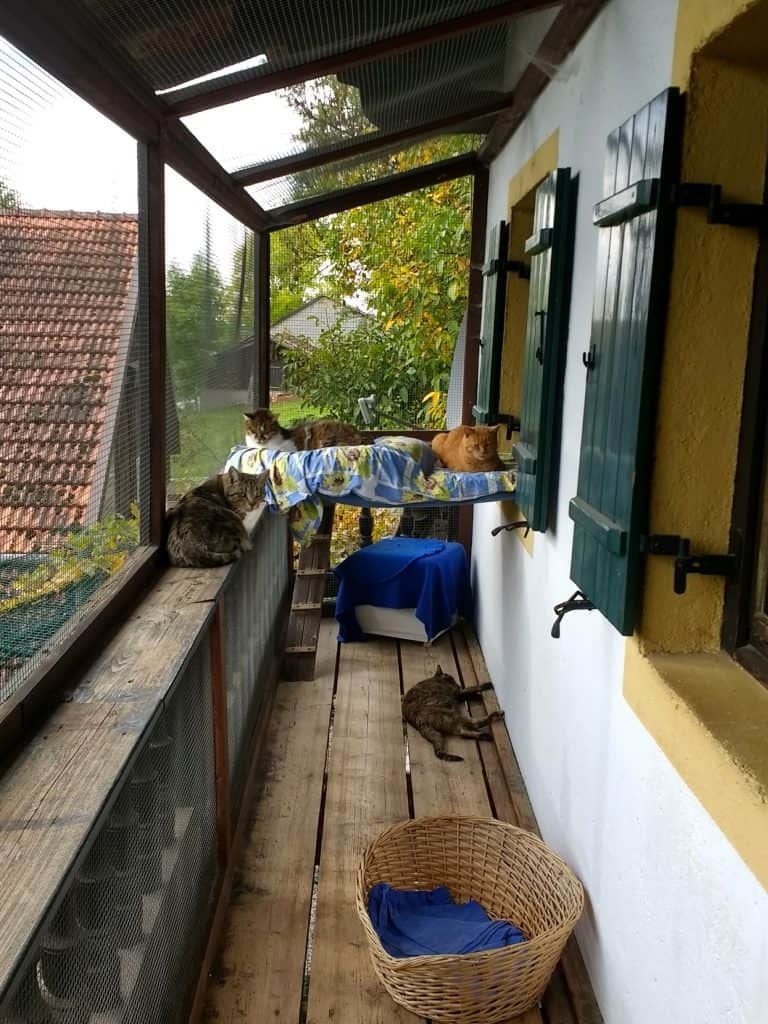 Balcony of cats house at Aiderbichl