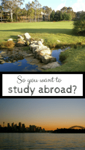 so you want to study abroad pin