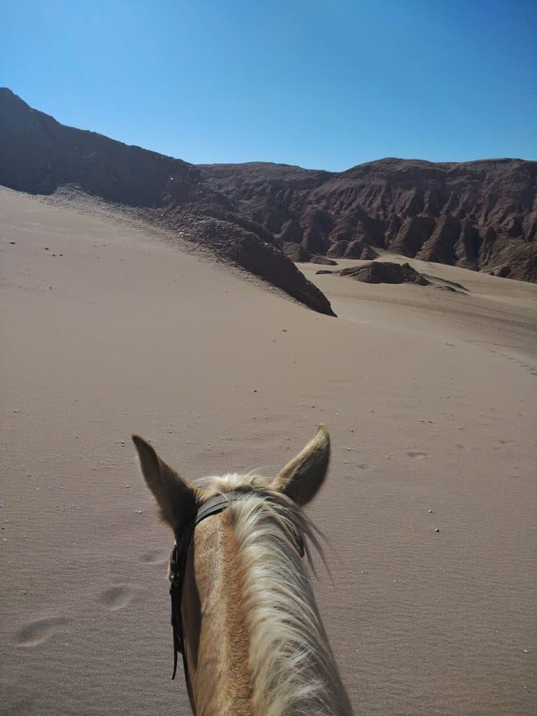 Vlle de la Muerte Horse Ride - Atacama
