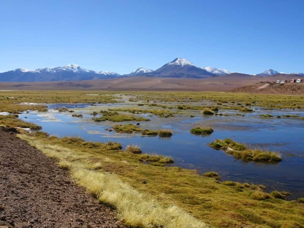 Vado Putana - Atacama