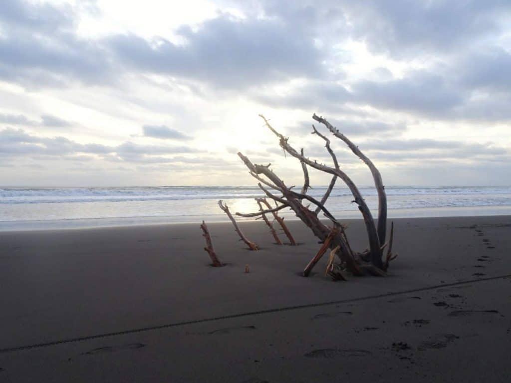 Pichilemu Beach