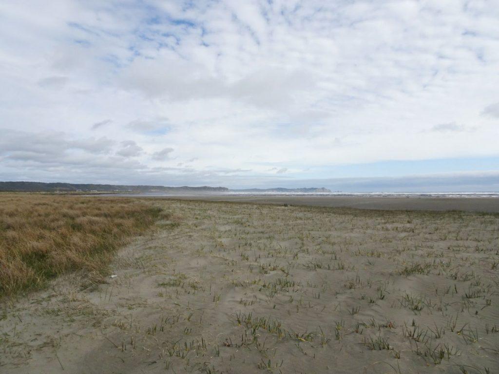 Beach Chiloe National Park