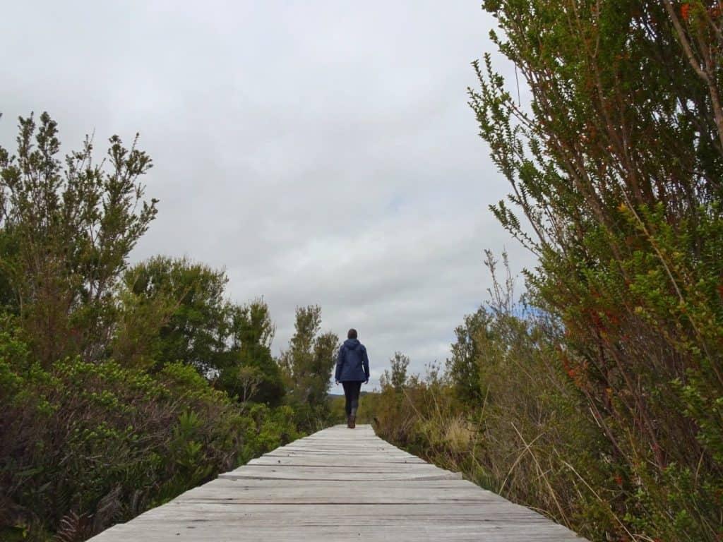 BOardwalk Chiloe National Park