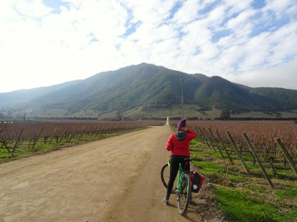 Bike Tour Wineyards Santa Cruz Chile