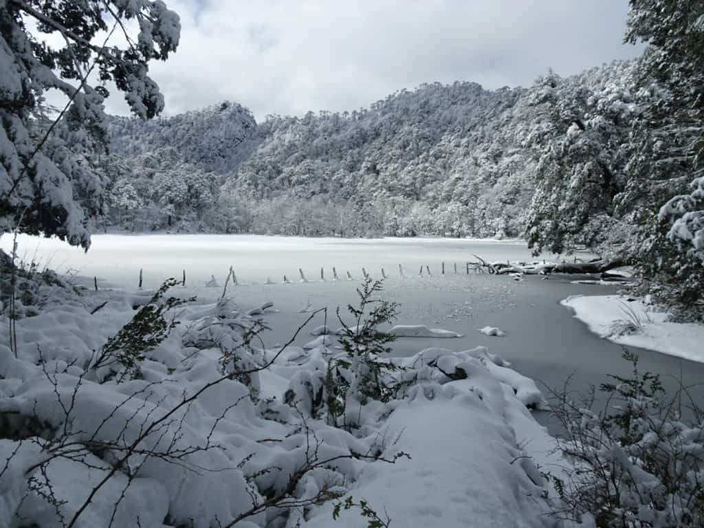 El Cani Natural Reserve, Pucon, winter travel in Chile