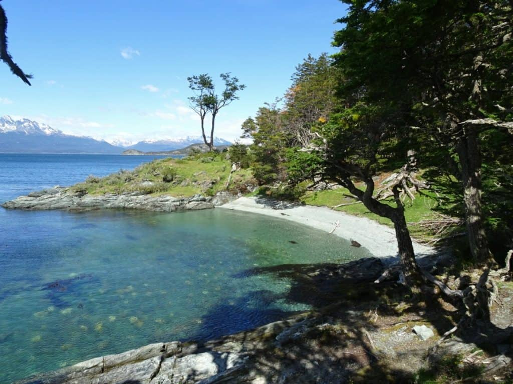 Tierra del Fuego National Park, Patagonia, Argentina