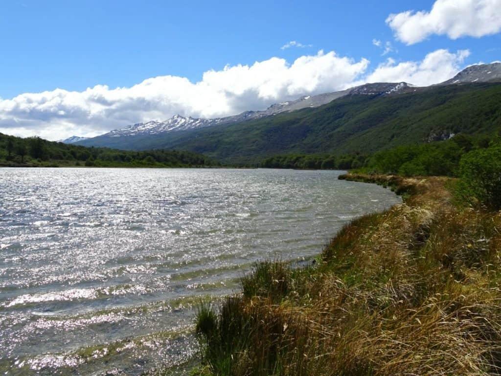 Tierra del Fuego NP, Patagonia, Argentina