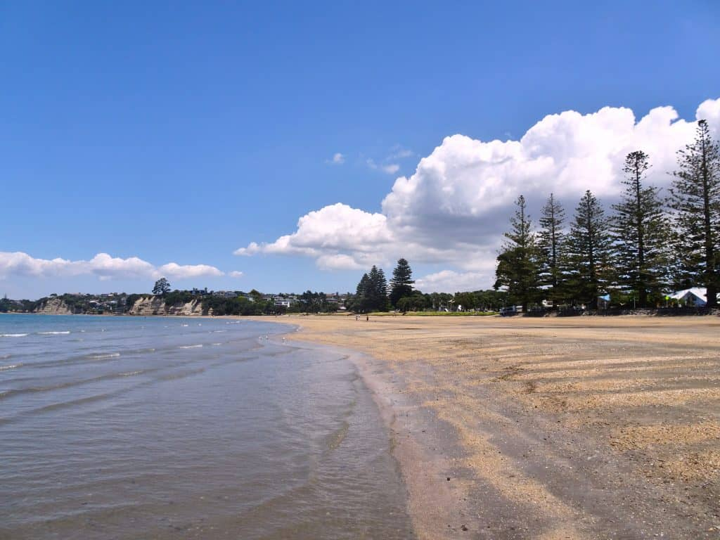 Browns Bay Beach Auckland North Shore New Zealand