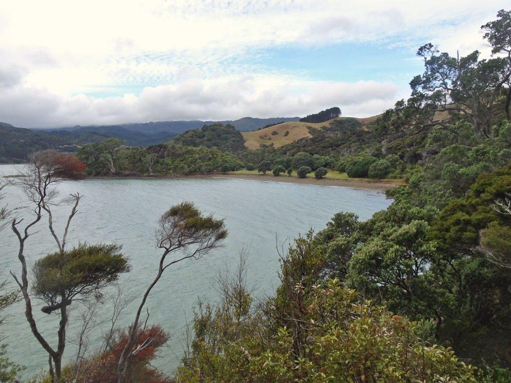 Long Bay, Coromandel Town, New Zealand