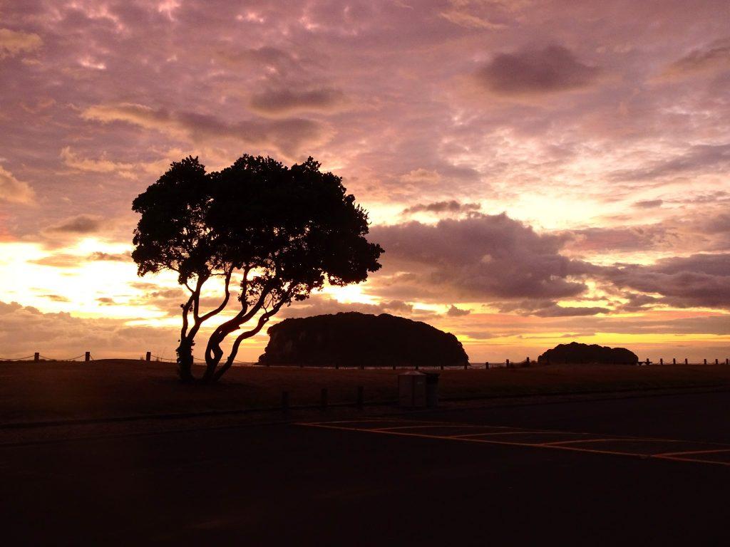 Sunrise at Whangamata Beach, Coromandel Peninsula, New Zealand