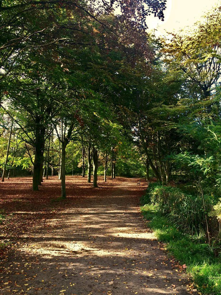 Bois de Vincennes, Park, Paris, France, going on a walk for alone.time on a trip