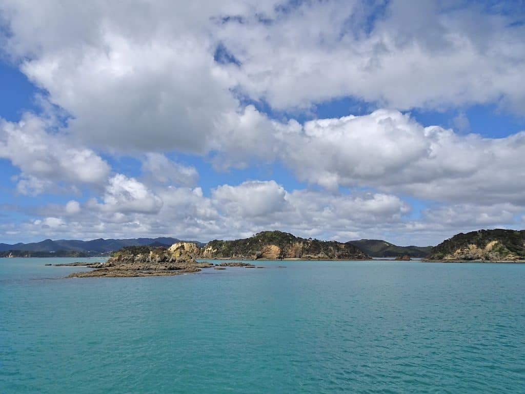 Coastline in the Bay of Islands, New Zealand