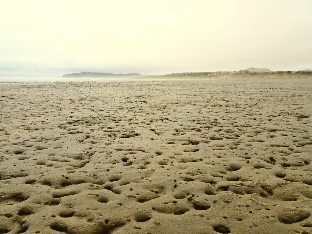 Ninety Mile Beach, New Zealand
