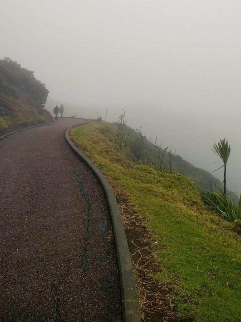 Walkway to Cape Reinga, New Zealand, covered in fog